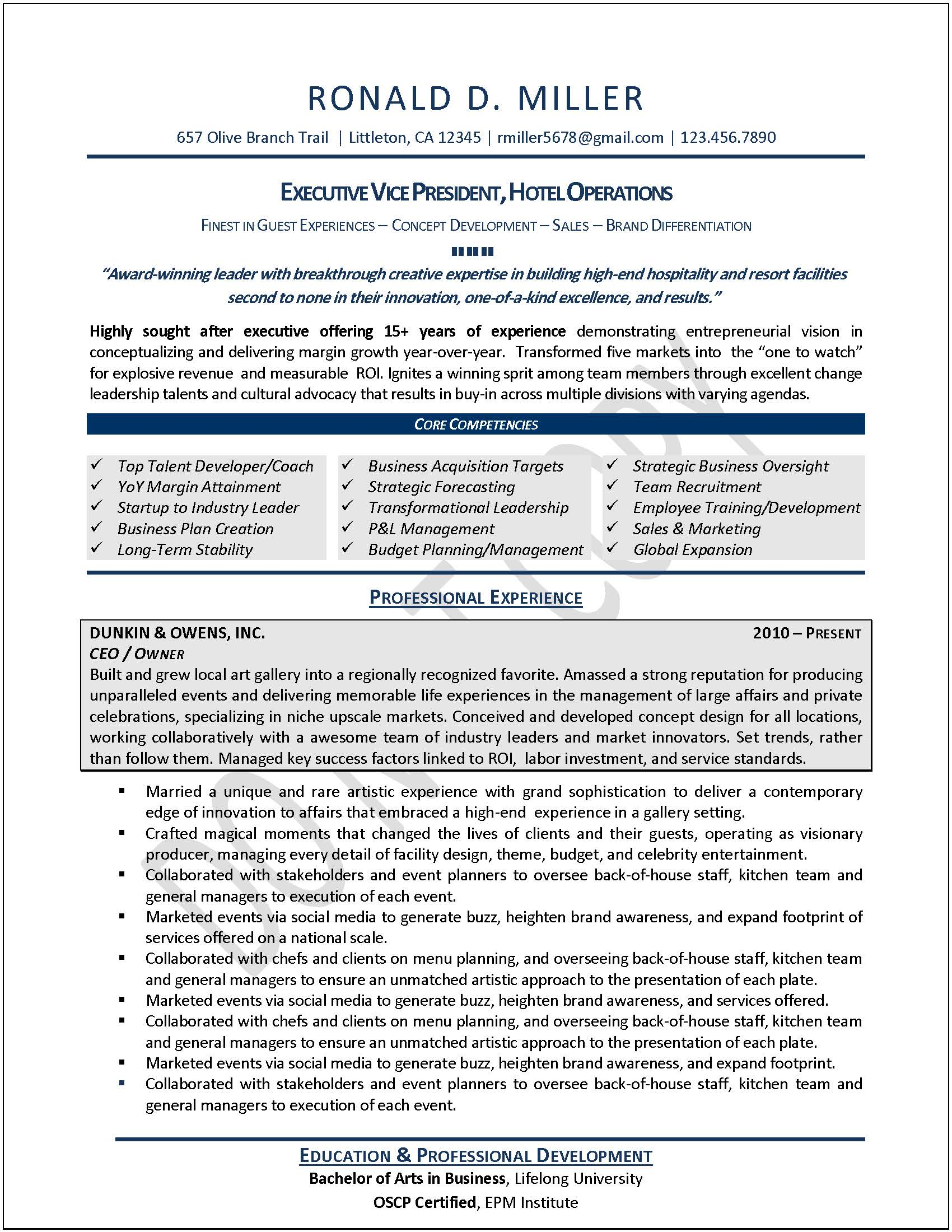 sample executive resume format executive resume samples professional resumes sample ceo