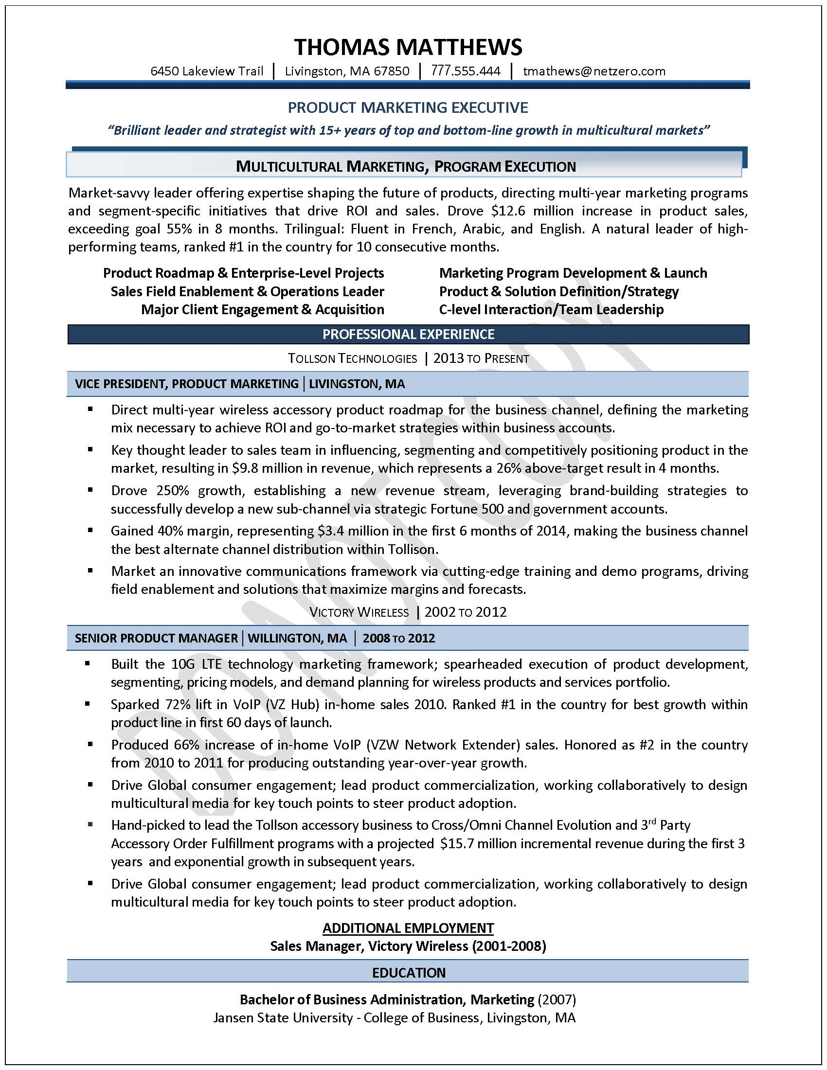 Professional Resume Examples Professional Resume Template Word ...